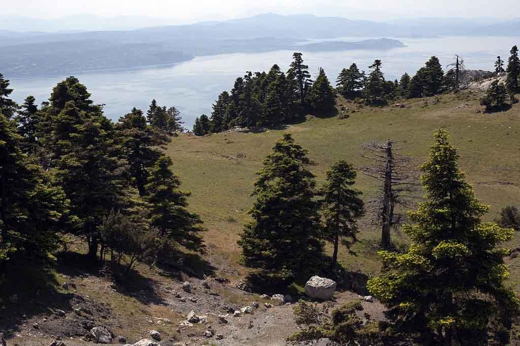 Kanthli_mountain_Evia_Greece_3